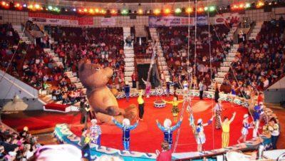 Бүгін – Халықаралық цирк күні